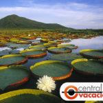 Turismo en la ciudad de Vitória, Brasil