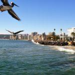 Un día de turismo en Viña del Mar, Chile