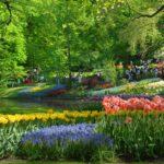 Los Jardines de Keukenhof, Países Bajos