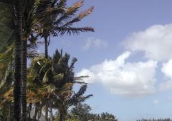 playa en la isla de Mauricio