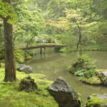 El Parque Imperial en Kyoto