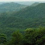 Reserva de la Biosfera: El Triunfo en Chiapas