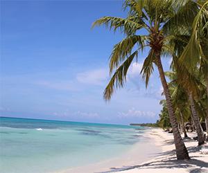 Ofertas de viajes con vuelo + hotel: Playa paradisiaca en Punta Cana